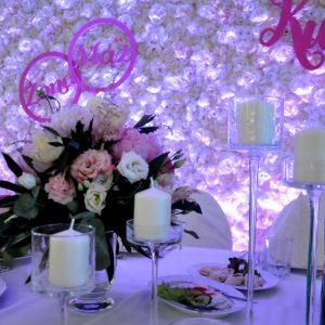scinka-kwiatowa-wypozyzcenie-lublin_zdpw60079247